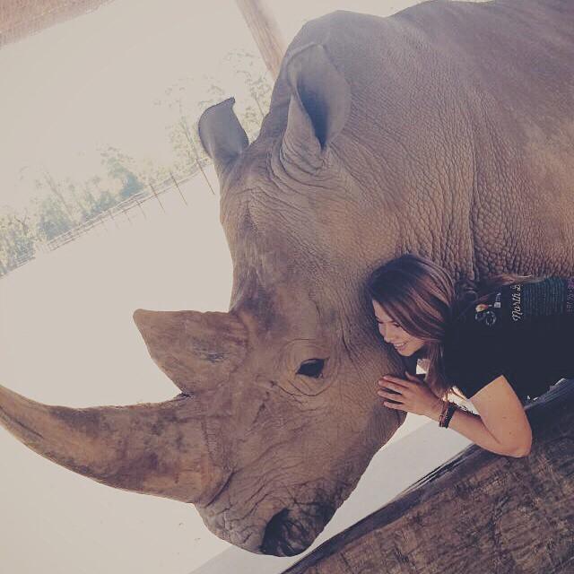 bindi-irwin-rhino
