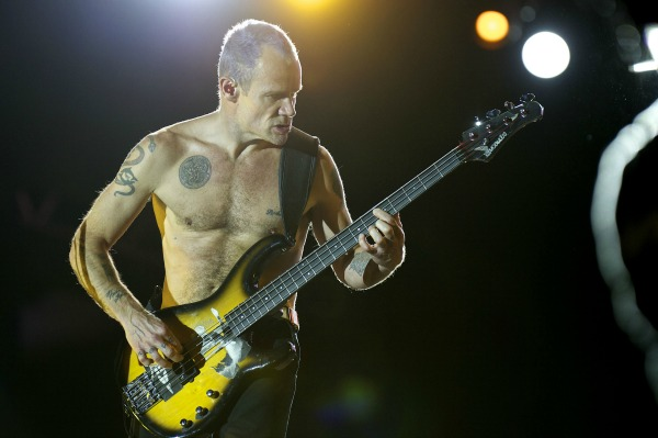 Flea of the Red Hot Chili Peppers