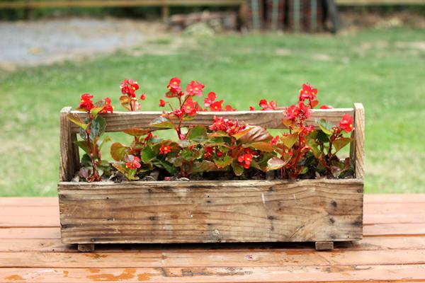 Tool box flower pot planter | Sheknows.com