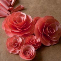 101 Different Ways To Make Paper Flowers Sheknows