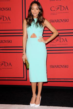 Ashley Madekwe at the the2013 CFDA Fashion Awards