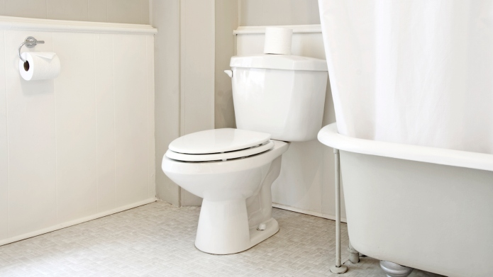 How to unclog a toilet without