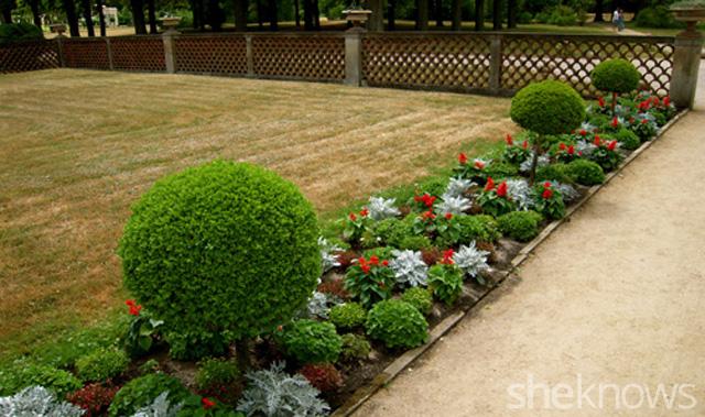 Garden 5
