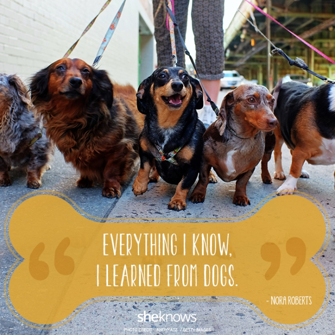 """""""Everything I know, I learned from dogs."""" —Nora Roberts"""