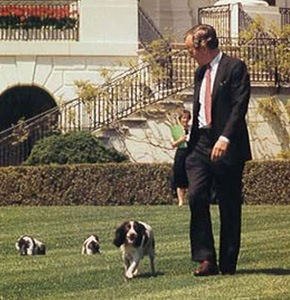 White House Pets Sheknows