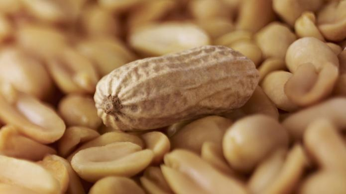The truth about peanuts and pregnancy