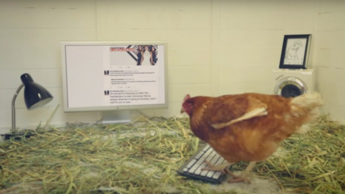 Fast Food Chain Has A Chicken Live Tweeting For Them Video Sheknows