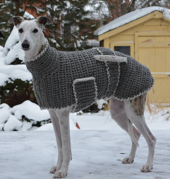 greyhound knit jumper for large dogs