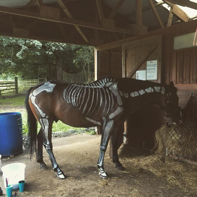 Horse skeleton costume