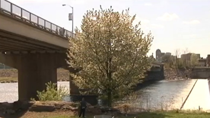 Teen mother throws baby from bridge