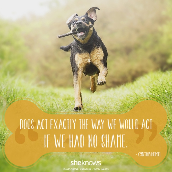 """""""Dogs act exactly the way we would act if we had no shame."""" —Cynthia Heimel"""