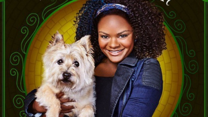 The Wiz: 7 Interesting facts about