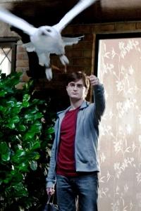 Harry says goodbye