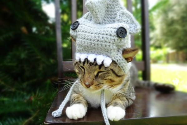 Hats for Cats on Etsy