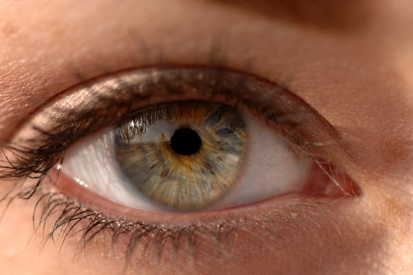 Hazel eye of woman