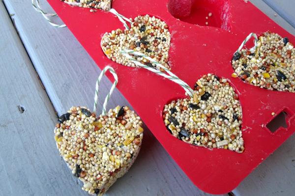 Valentine's Day bird feeder craft | Sheknows.com