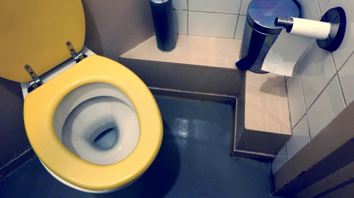 Why I absolutely cannot poop in