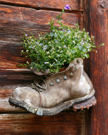 Hiking boot planter