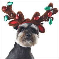 Holiday Plush Reindeer Antlers and Ears with Faux Light Bulbs