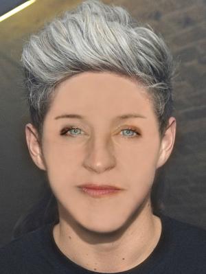 Ellen on Niall