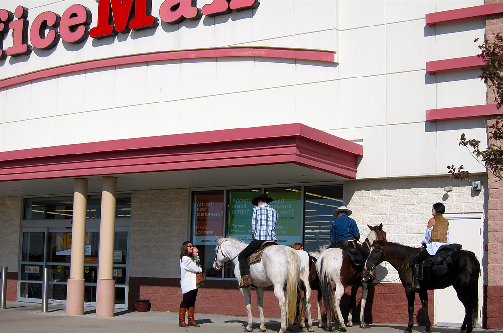 horses in front of office max