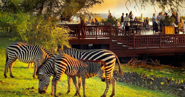 Royal Livingstone, Zambia