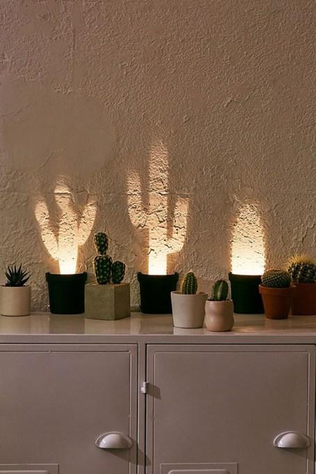 Pop-Up Cactus Light
