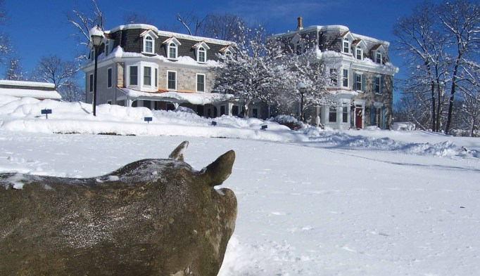 Active Winter Wellness Retreats | Fox & Hound Bed & Breakfast of New Hope