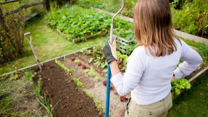 Triscuit Home Farming Movement