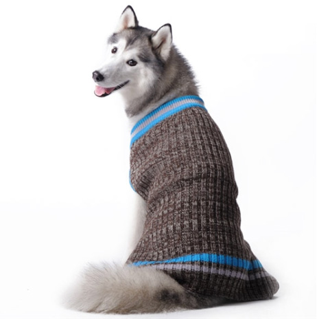 City V-Neck Sweater for large dogs