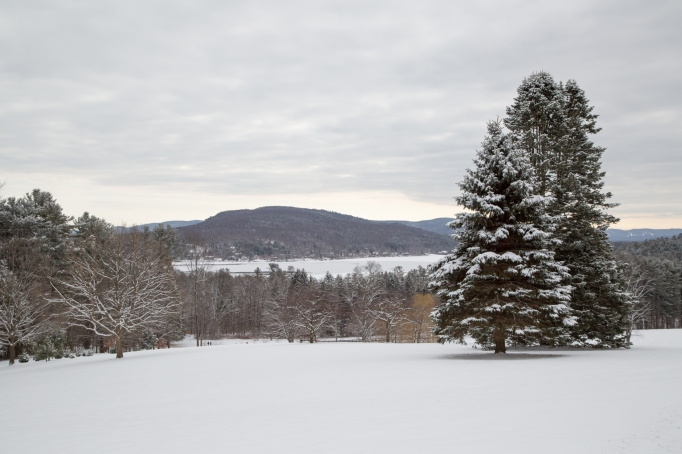 Unique Wellness Retreats | Kripalu