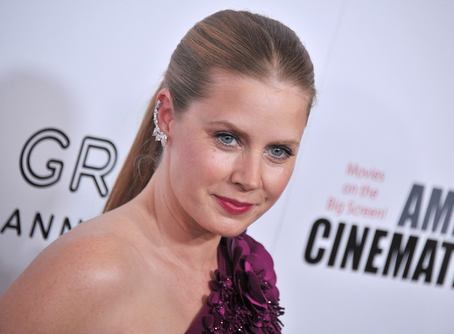 Movie Stars Who Aren't Above Doing TV: Amy Adams