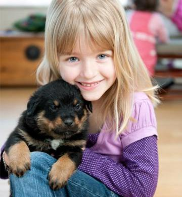 Kids and puppies: Rules, safety and