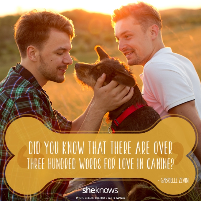 """""""Did you know that there are over three hundred words for love in canine?"""" —Gabrielle Zevin"""