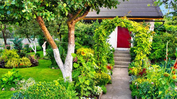 10 Extreme gardens that took way