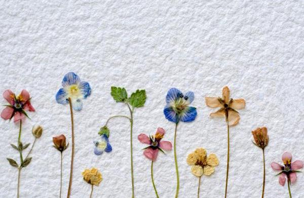 Make a dried flower wall quilt