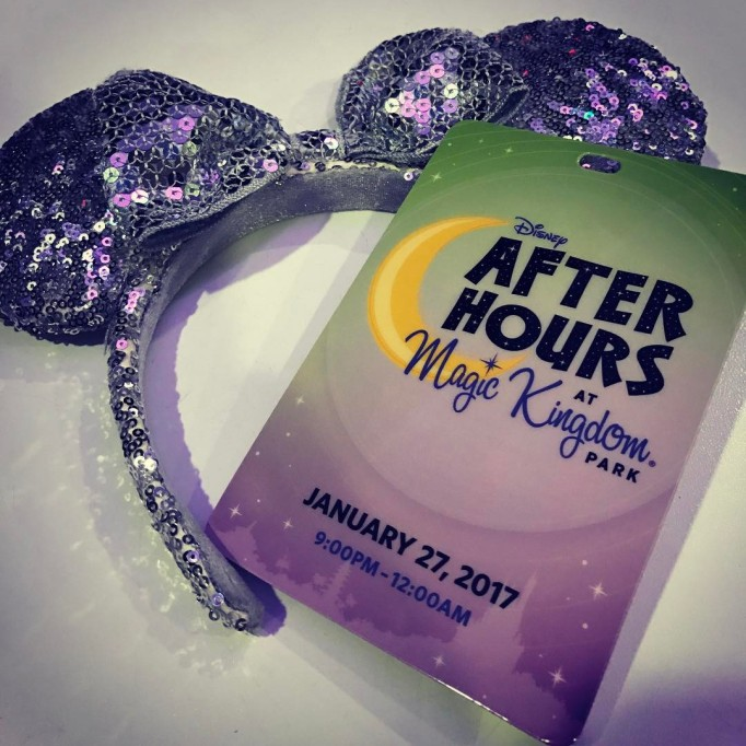 What to See, Do, Eat at Disney World This Winter: Disney After Hours
