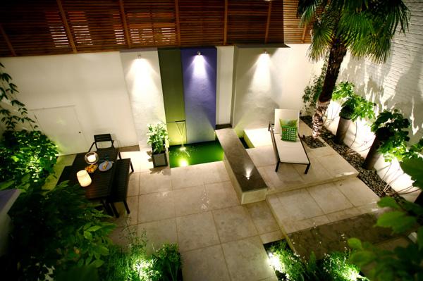 Illuminated Backyard