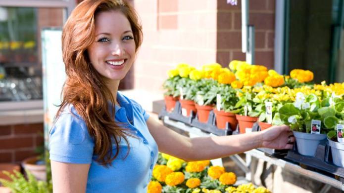 Choosing Nursery Plants