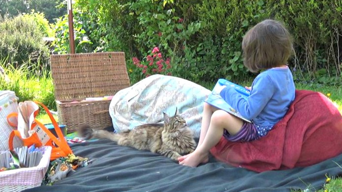 How a cat helped an autistic