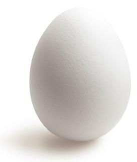 Egg | Sheknows.ca