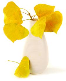fall leaf vase