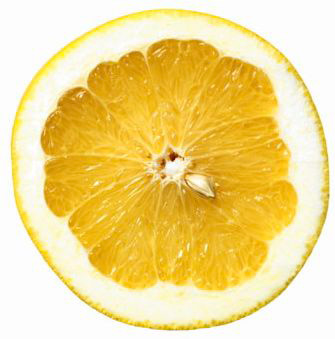 Lemon slice | Sheknows.ca