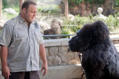 Kevin James stars in the Zookeeper