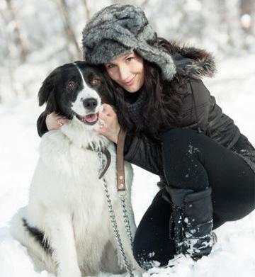 Go, dog, go: Pet-friendly winter destinations