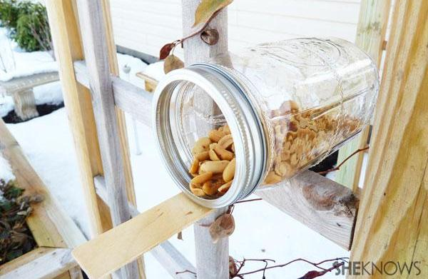 Make your own squirrel feeder
