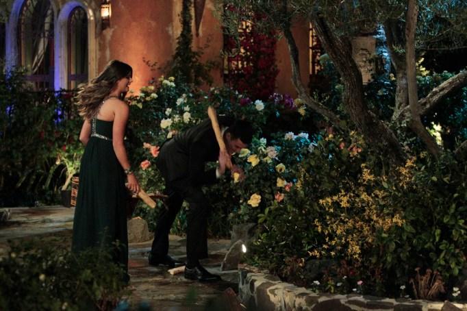 The Bachelor Season 20 premiere