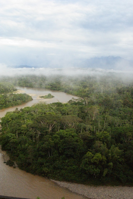 Must-See Travel Sites: Amazon Rain Forest