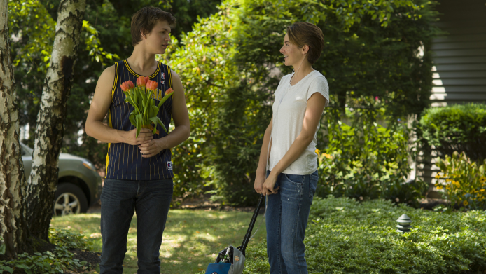 Did The Fault in Our Stars