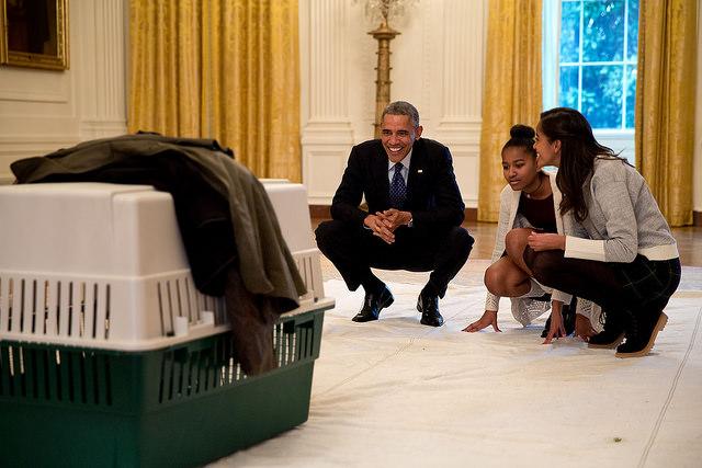 2014-turkey-pardon-malia-sasha-obama